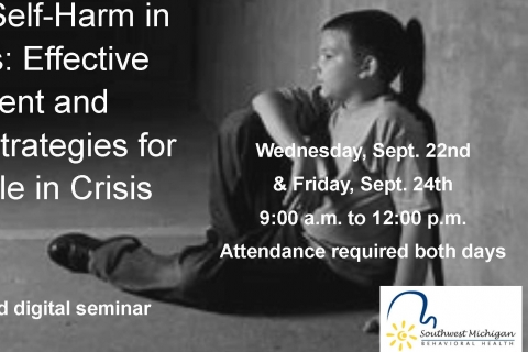 Suicide and Self-Harm in Adolescents: Effective Assessment and Intervention Strategies for Young People in Crisis